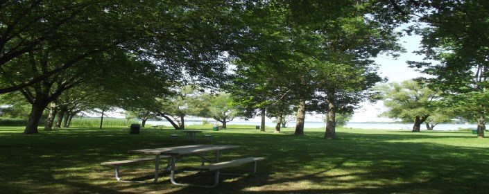 Picture of park with picnic table