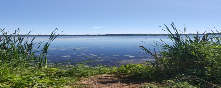 Picture of Lake Scugog