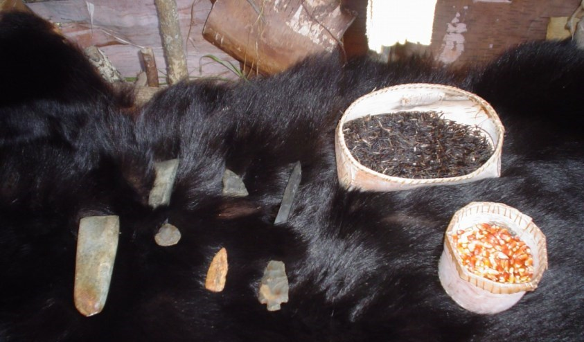 bear fur displayed with wild rice, corn and stone points